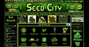 """ד""""ש למלחמה בסמים: חברת הזרעים """"Seed City"""" קוראת תיגר על החברות הותיקות בתעשייה"""