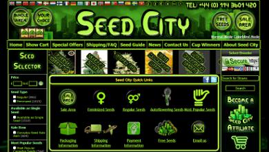 """Photo of חברת הזרעים """"Seed City"""" קוראת תיגר על החברות הותיקות בתעשייה"""
