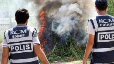 Photo of פשיטת ענק בטורקיה: 3 טון חשיש ו-15 מיליון שתילי מריחואנה נתפסו ביום אחד
