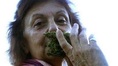 """Photo of """"חשיש לקשיש"""" – ראיון עם סילביה שינבוים"""