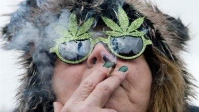 Photo of מחקר הולנדי חדש: מריחואנה עושה אותנו שמחים יותר