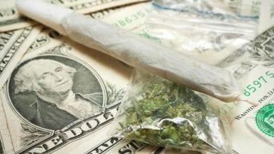 Photo of מחיר הקנאביס החוקי באורוגוואי: 2.5$ דולר לגרם מריחואנה