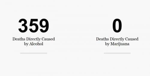 הרוגים מאלכוהול מול קנאביס