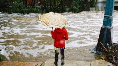 Photo of קולורדו: מריחואנה בחינם לקורבנות השטפון הגדול