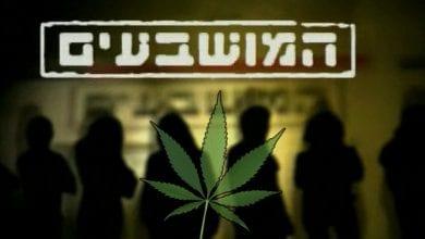 המושבעים - לגליזציה של סמים קלים