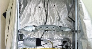 שלושה אוהלי גידול מוכנים
