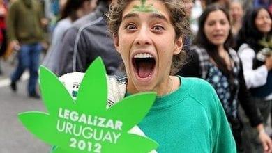 Photo of לגליזציה באורוגוואי: גרם מריחואנה בדולר אחד
