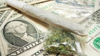 מחירי מריחואנה בעולם