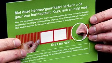 Photo of הולנד: כרטיסי גירוד בריח מריחואנה יחולקו לתושבים – כדי שילשינו על בתי גידול