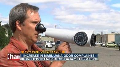 Photo of קולורדו: מחפשים גידולי מריחואנה עם מכשיר בודק ריחות