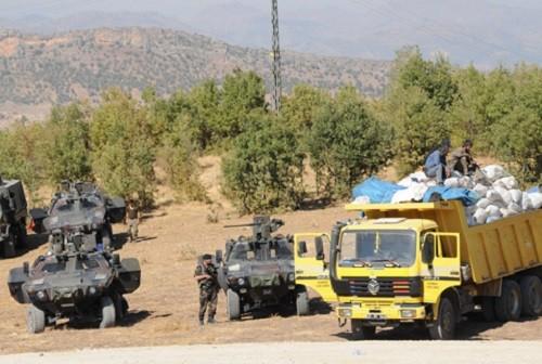 23 טון מריחואנה נתפסו בטורקיה