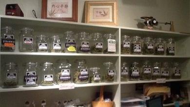 """Photo of היסטוריה בקולורדו: חנות המריחואנה החוקית הראשונה בארה""""ב"""