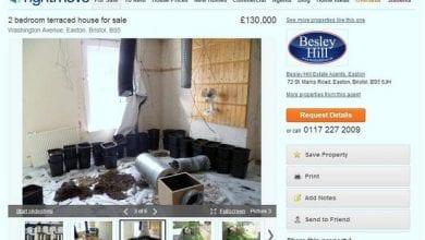 "Photo of חדרי גידול מריחואנה הוצגו בטעות באתר למכירת נדל""ן"