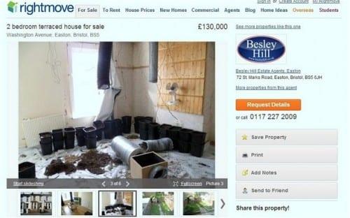 בית קנאביס למכירה