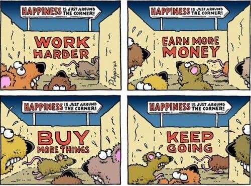 מרוץ עכברים