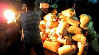 Photo of סיביר: שרפו 3 טון סמים כדי לחמם כפר במשך 24 שעות
