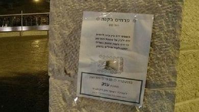Photo of הנה אני באה: פיית הגראס הגיעה לירושלים