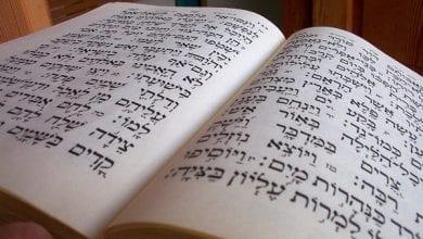 "Photo of המקורות התנ""כיים של השימוש היהודי בקנאביס"