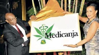 Photo of מדיקאנג'ה: חברת הקנאביס הרפואי הראשונה בג'מייקה