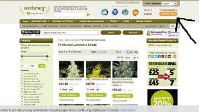 Photo of מדריך לרכישת זרעים באתר Seedsman