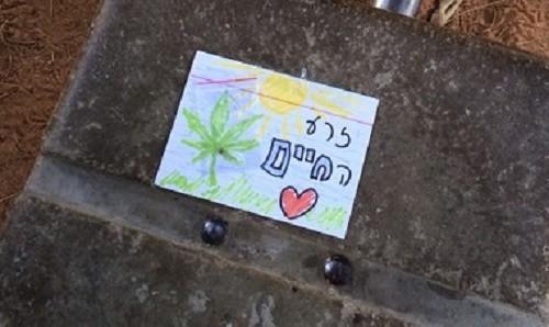 פיית הגראס בתל אביב