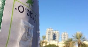 פית הגראס בתל אביב