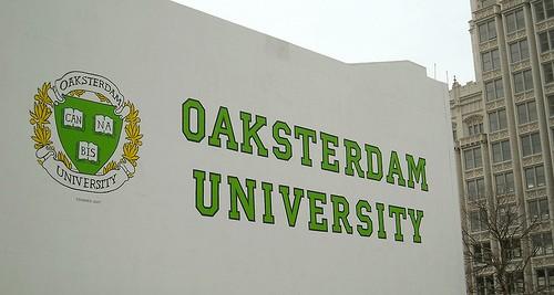 אוניברסיטת אוקסטרדם