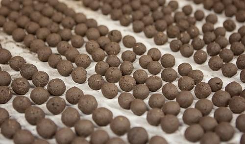 פצצות זרעים