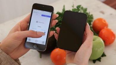 Photo of חדש: מכשיר אישי לבדיקת איכות הקנאביס ואחוזי ה-THC