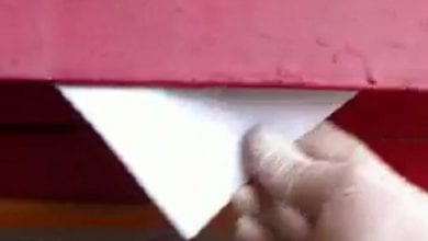 "Photo of צפו: ""המשתלה"" שולחים קנאביס חינם בדואר"