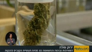 Photo of מניות הקנאביס פורחות – משקיע ישראלי מספר על הרווחים