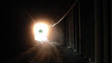 Photo of האור בקצה המנהרה / הנריק רוסטוביץ'