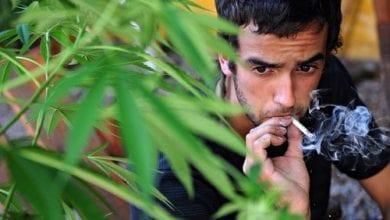 "Photo of וועדת הסמים באו""ם: ""הלגליזציה היא טעות ומנוגדת לחוק"""