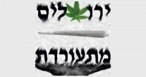 קנאביס ירושלים