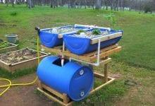 Structure de base d'un système aquatique