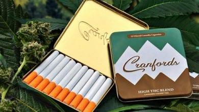 סיגריות קנאביס Cranfords