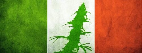 קנאביס איטליה