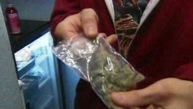חבילת מריחואנה סיאטל