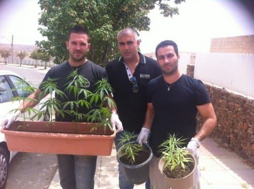 גיבורים על צמחים. משטרת ישראל
