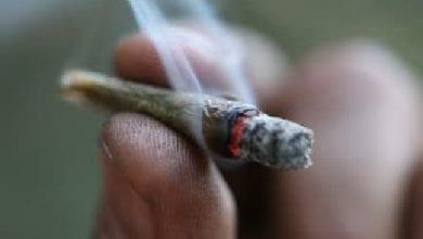 """Photo of דו""""ח המשטרה: 23,000 תיקים פליליים בשנה על שימוש בסמים"""