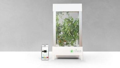 Photo of חדש: אפליקציה לגידול קנאביס הידרו בבית