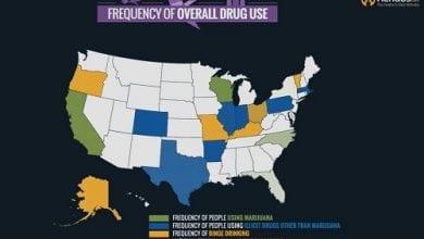כמה משתמשים במריחואנה ואלכוהול וסמים