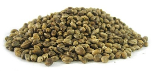 Cannabis seeds are excellent