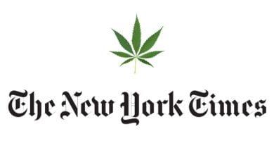 "Photo of הניו יורק טיימס: ""לבטל האיסור על מריחואנה"""