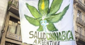 קנאביס ארגנטינה
