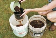 מדריך להכנת תה קומפוסט