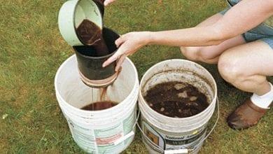 "Photo of מדריך להכנת ""תה קומפוסט"" – תמצית להעשרת האדמה"