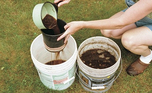 """מדריך להכנת """"תה קומפוסט"""" – תמצית להעשרת האדמה"""