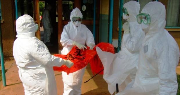 אבולה קנאביס