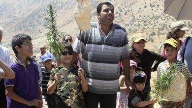 """Photo of מגדלי המריחואנה בלבנון מתכוננים להילחם בדאע""""ש"""